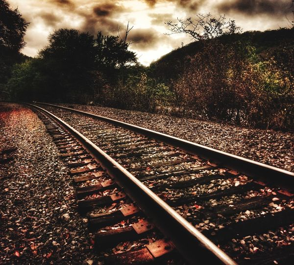 Railroad Track Rail Transportation Transportation Outdoors No People Tree Sky Day Nature Fog Low Angle View Pinaceae Tree Area Tree Beauty In Nature Nature Transportation The Way Forward Dramatic Sky Cloud - Sky Star - Space Astronomy Red Sunset Heat - Temperature