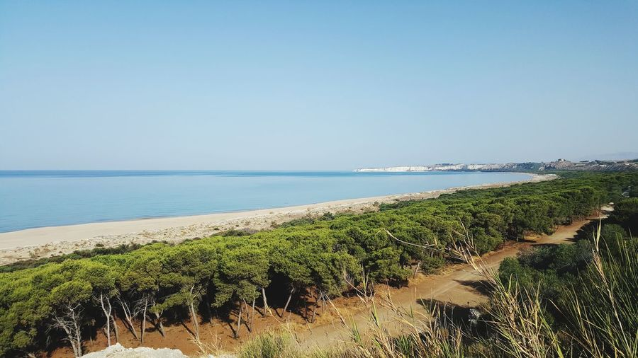 Beach Sea Sand Tranquil Scene Horizon Over Water Tranquility Water Vacations Landscape Travel Destinations Tourism Beauty In Nature Nature Outdoors Sky Day Scenics Growth No People Clear Sky torresalsa sicily
