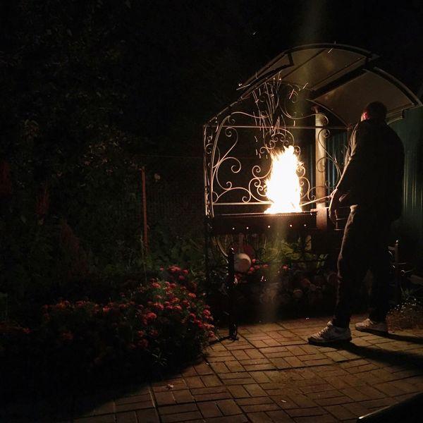 Illuminated Potted Plant Lifestyles Plant Flooring Growth Paving Stone