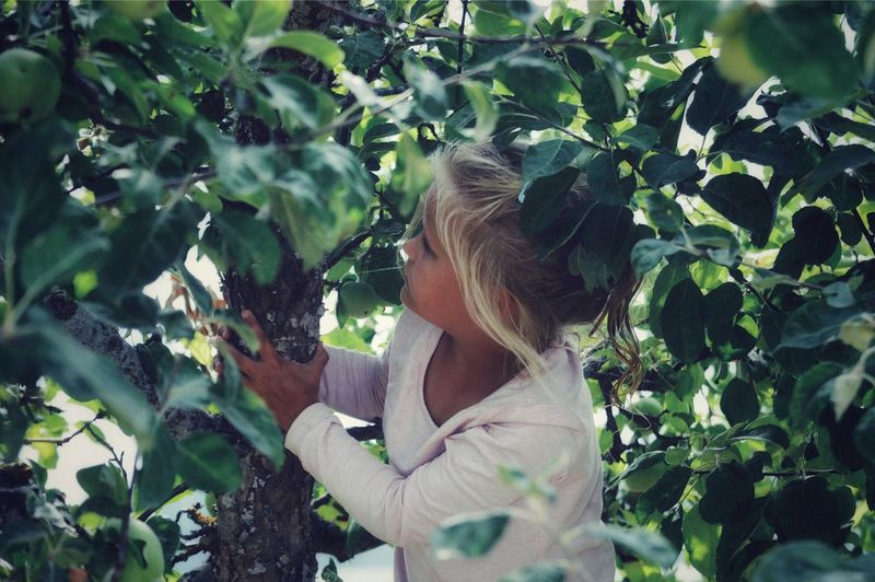 Fun Street Photography Portrait Backyard Orchard Climbing Climbing Trees Child Girl Tree Apple Tree Plant One Person Growth Leisure Activity Nature Leaf Lifestyles Plant Part Real People Day Green Color Standing Hairstyle Gardening Outdoors My Best Photo International Women's Day 2019 Springtime Decadence