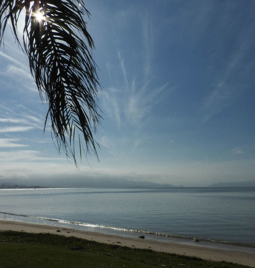 Beira Mar Norte, Florianópolis Relaxing Sunlight Sunny Beach Beauty In Nature Blue Cloud - Sky Day Horizon Over Water Nature No People Outdoors Pariser Platz Sand Scenics Sea Seascape Sky Sprig Sunlight And Shadow Tranquil Scene Tranquility Tropical Climate Water