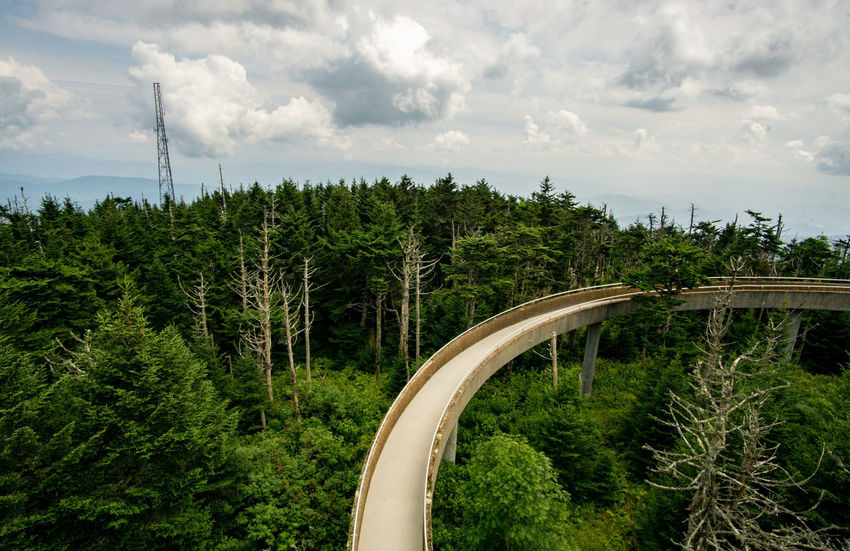The Big Bend Great Smoky Mountains  Path Built Structure Walkway Clingmans Dome Hike Trail Moutains Moutain Top Trees And Sky Skyline Moutain View Tree Sky Landscape Cloud - Sky Tree Area Dense