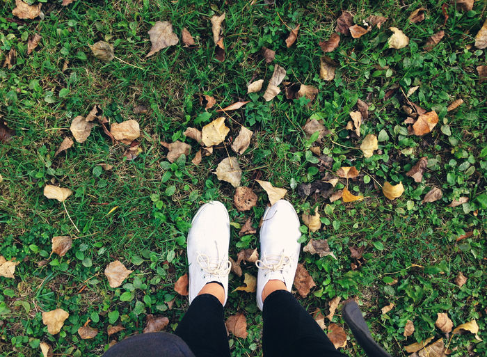 Fall from where I stand Autumn Change Dry EyeEm Nature Lover Fall Fallen Feet Footwear Grass Grassy Green Green Color High Angle View Human Foot Leaf Leaves Legs Lifestyles Low Section Outdoors Person Personal Perspective Season  Shoe Standing