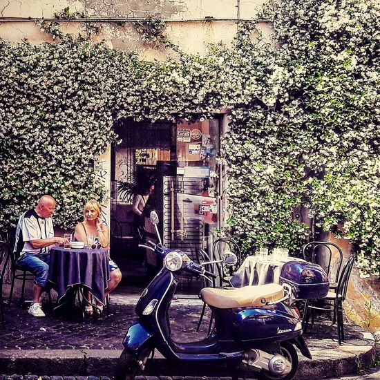 Rome Italy🇮🇹 Leave Poppies  Natural Light Rome Trastevere Men Technology Architecture