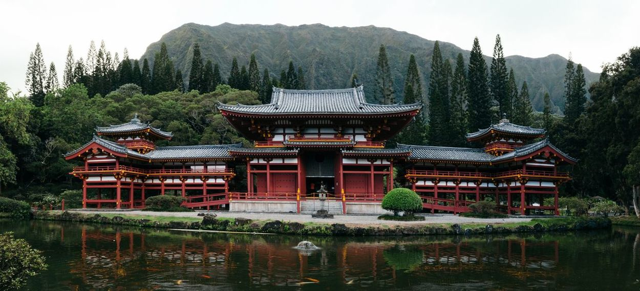 🏯 Water Roof Day Tree Outdoors Built Structure Architecture Building Exterior This Week On Eyeem Travel Destinations Arts Culture And Entertainment Temple Byodo-In Temple Tradition EyeEm Selects Buddhism Bhuddha Japanese  Hawaii Buddhist Temple
