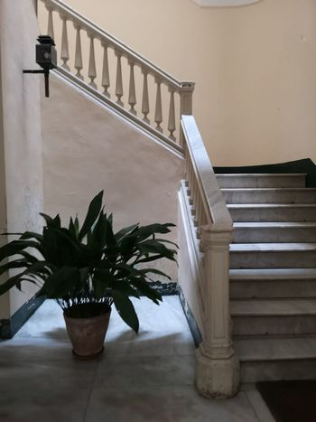 Corti Salento Lecce Italy🇮🇹 Politics And Government Prison Steps And Staircases Staircase Architecture Built Structure