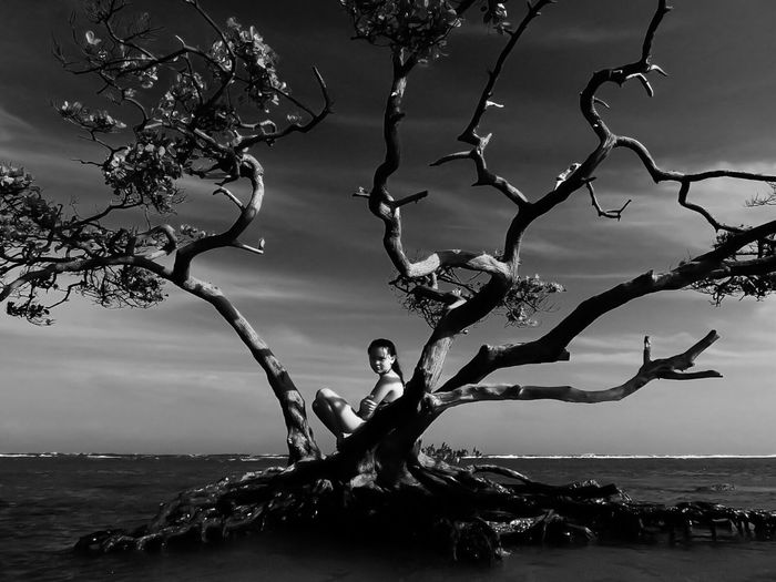 Scenic view of beautiful woman sitting on tree against sea