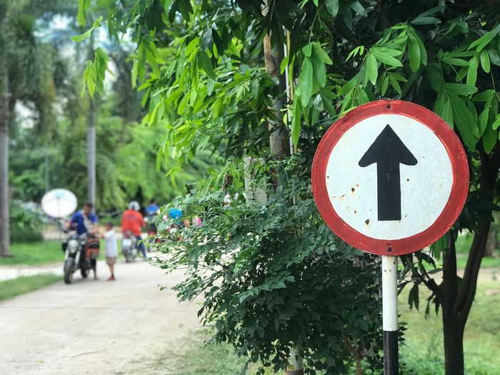 Sign of road Road Sign Road Transportation Sign Plant Day Land Vehicle Nature Mode Of Transportation Green Color Bicycle Tree Incidental People Outdoors Direction Symbol Communication Arrow Symbol Guidance Growth