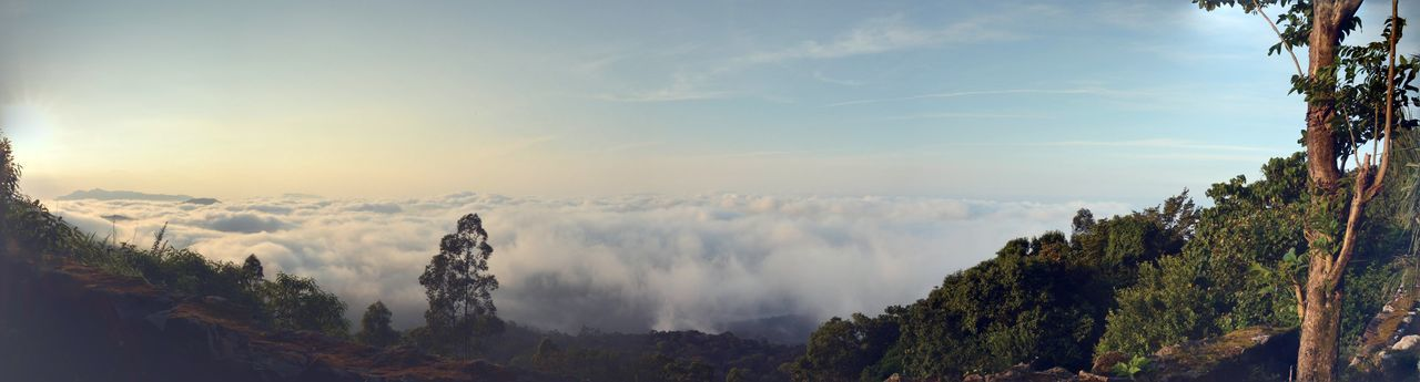 Panorama above clouds Beauty In Nature Cloud - Sky Nature Panoramic Tranquil Scene
