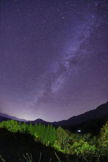 高く流れる天の川🌌なので縦写なのさ😆 銀河鉄道の夜♪ 一目惚れんず Landscape Astronomy Galaxy Space Star - Space Milky Way Mountain Tea Crop Rural Scene Illuminated Star Trail