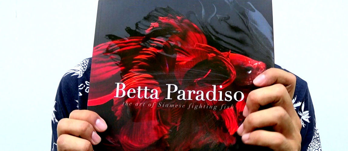 Betta Paradiso Photobook Betta Paradiso Betta Fish Close-up Day Human Hand One Person Outdoors People Photobook Real People Red Text