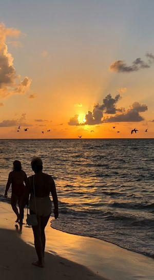 Rear view of silhouette female friends walking at beach against orange sky