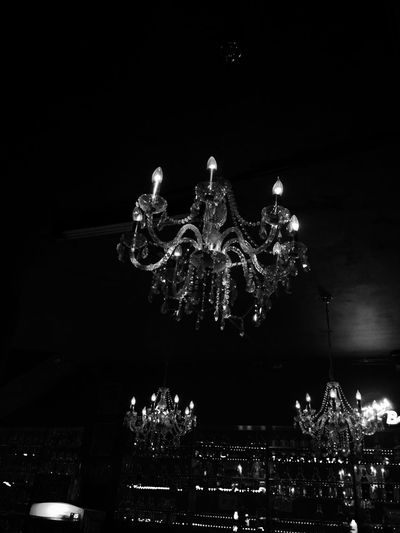 party night in the lair of the bears. Party Bear Chandelier