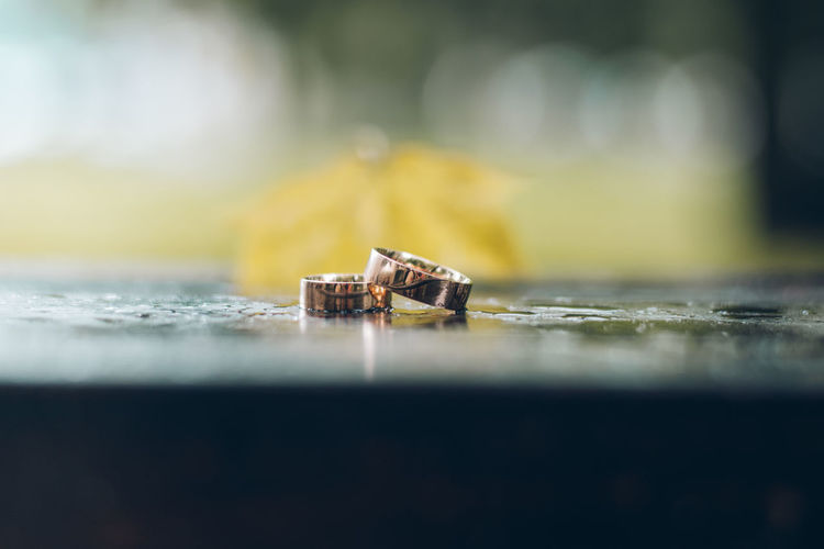 Love Wedding Close-up Day Nature No People Outdoors Ring Rings 💍 Selective Focus Fresh On Market 2017