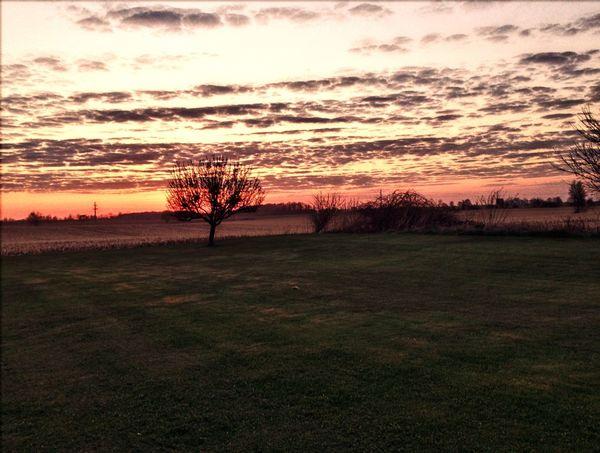 Sunset Outdoors HDR Michigan Backyard