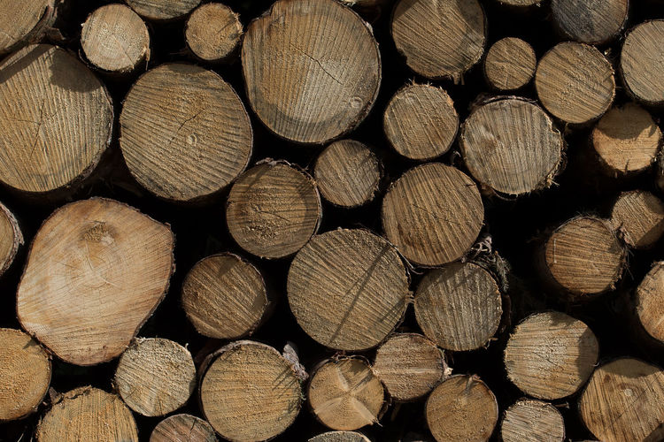 Abundance Backgrounds Close-up Deforestation Firewood Forest Full Frame Heap Hoffi99 Large Group Of Objects Log Lumber Industry No People Pattern Stack Textured  Timber Tree Wood Wood - Material Wood Grain Woodpile