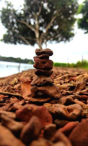 Beach Rock Equilibrium Simetry Stone Sandy Beach