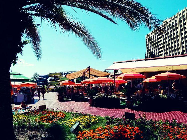 Hi! Crazy Moments Hello ❤ Adler Selfi Park Soshi Relaxing Walk Blaksea Hello World Great Atmosphere Sea Beautiful Day Relaks Beautiful ♥ Akvapark