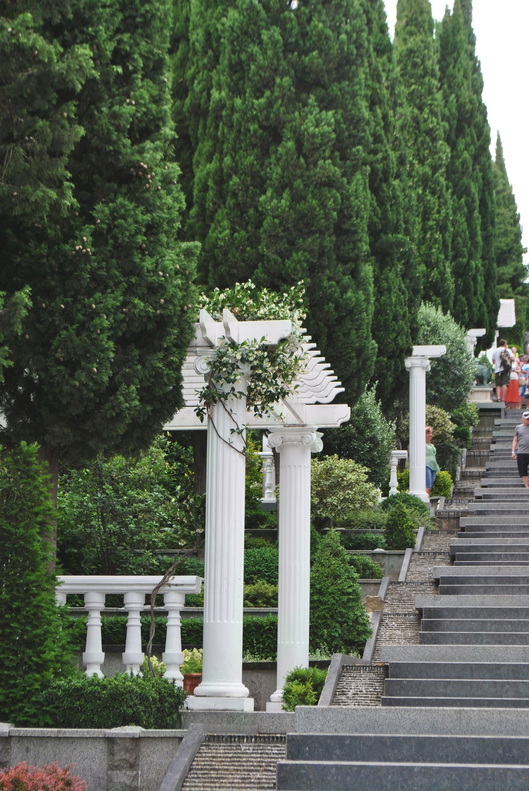 plant, tree, architecture, staircase, built structure, day, nature, growth, no people, green color, steps and staircases, outdoors, religion, belief, spirituality, place of worship, travel destinations, park, memorial, the way forward, architectural column, shrine