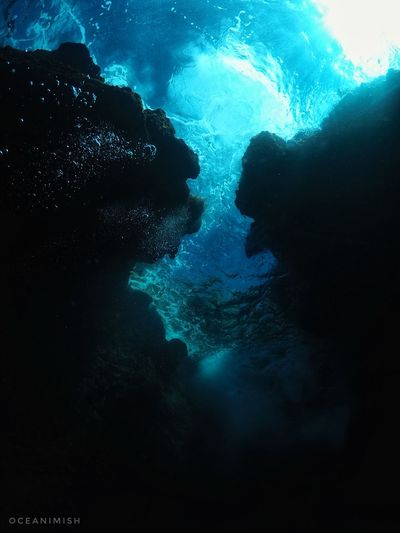 Gopro Scubadiving Bubbles Cavern Underwater Planetocean Underwaterphotography Vitaminsea Divetheworldsoceans Saltedlifestyle Diverlife Oceantribe Oceaninsta Scubadivingisfun Gdome Oceanminded Scubamag Waterlust Spreadthelust Passage LetsGetWet Scubalooks Caribbean RumDiaries Volcanic  Goprooftheday Goprouniverse
