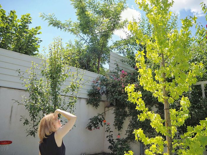Woman Looking At Trees During Sunny Day