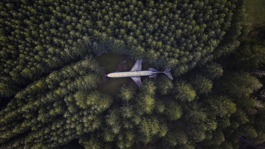 High Angle View Airplane Aerial View Dronephotography Directly Above Birds Eye View Trees Forest