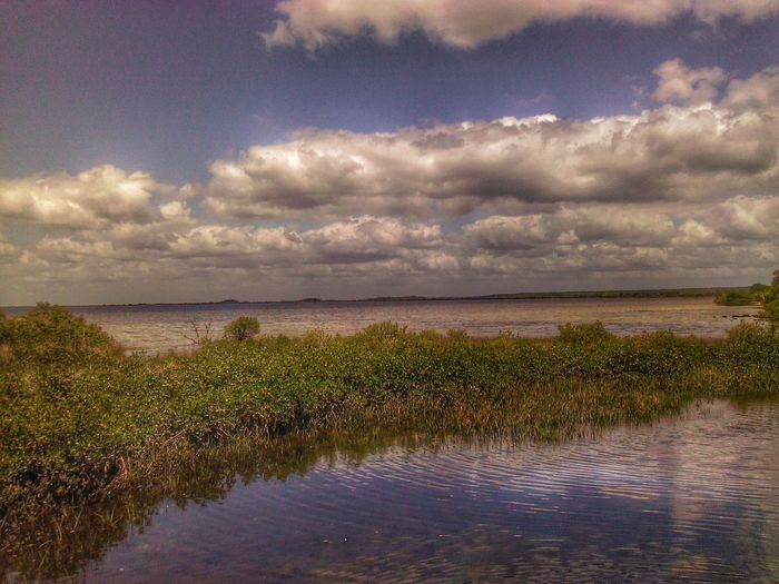 On The Road To The Beach in Spring Hill FL Hanging Out Water Reflections Sky And Clouds Enjoying Life Eyeemphotography Landscape Hello World No People EyeEmwaterlover
