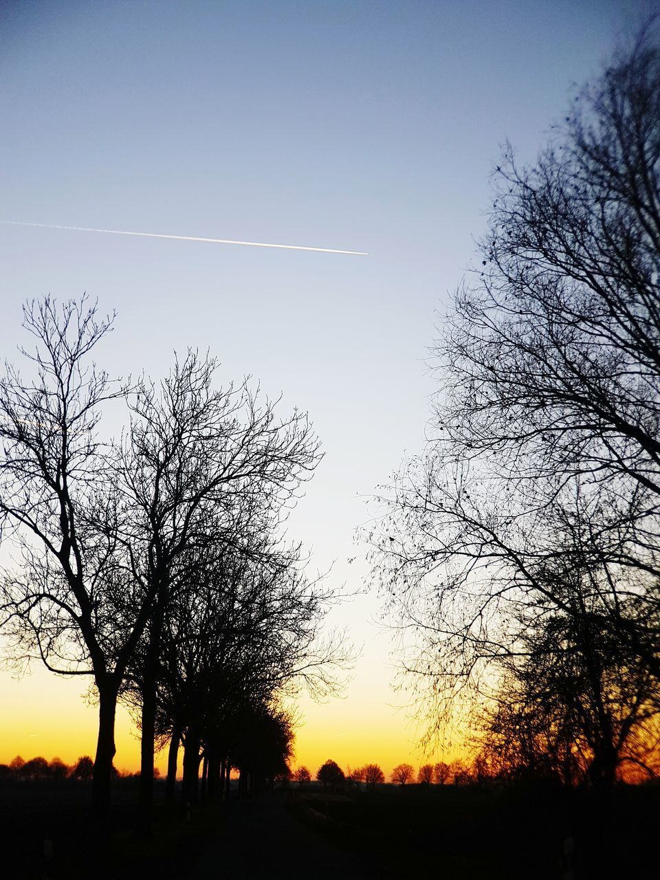 silhouette, tree, vapor trail, beauty in nature, scenics, sunset, nature, bare tree, majestic, contrail, tranquility, tranquil scene, no people, landscape, sky, outdoors, branch, day