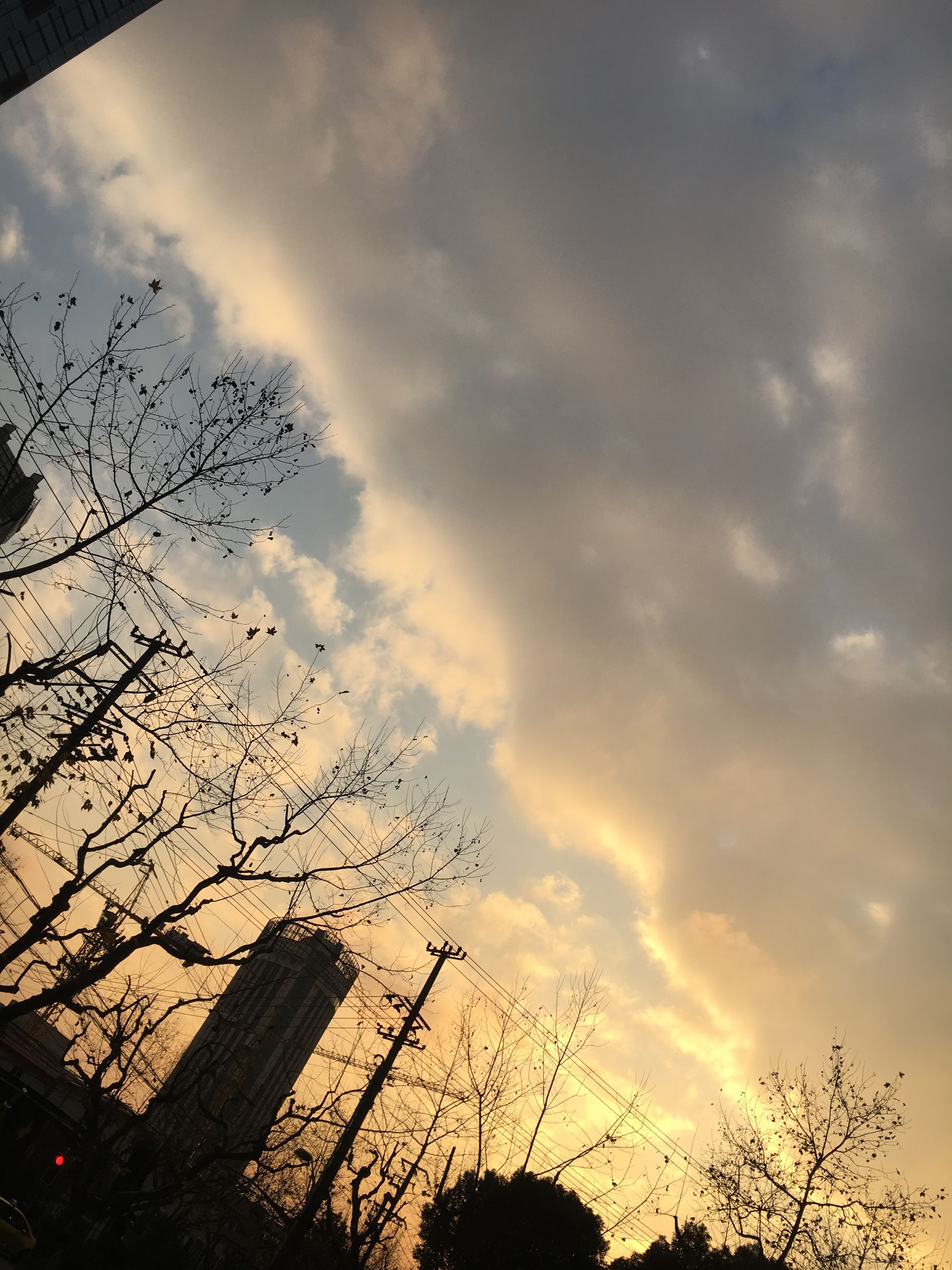sky, sunset, cloud - sky, nature, no people, dusk, silhouette, beauty in nature, low angle view, dramatic sky, outdoors, tree, animal themes, day
