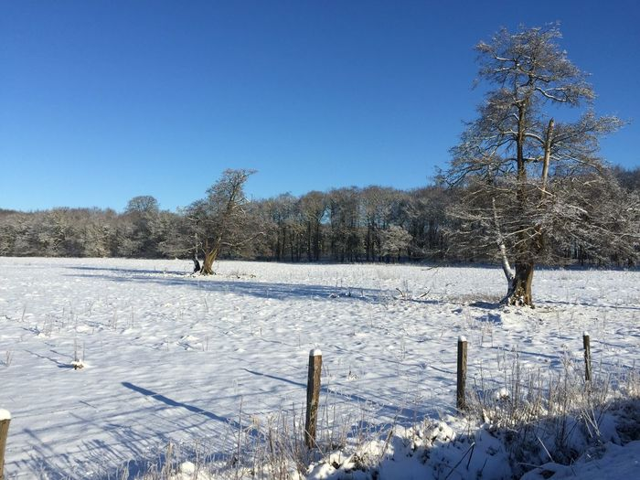 Snow covered field against clear sky