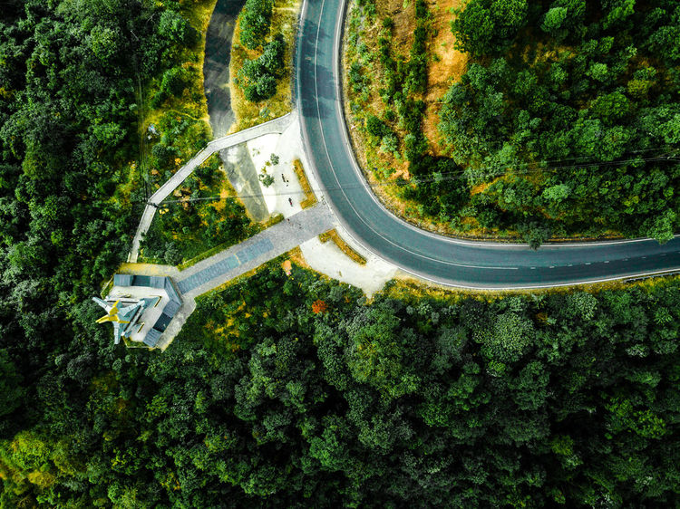 DJI X Eyeem Drone  Aerial View Day Dronephotography Green Color Growth Nature No People Outdoors Skypixel Tree