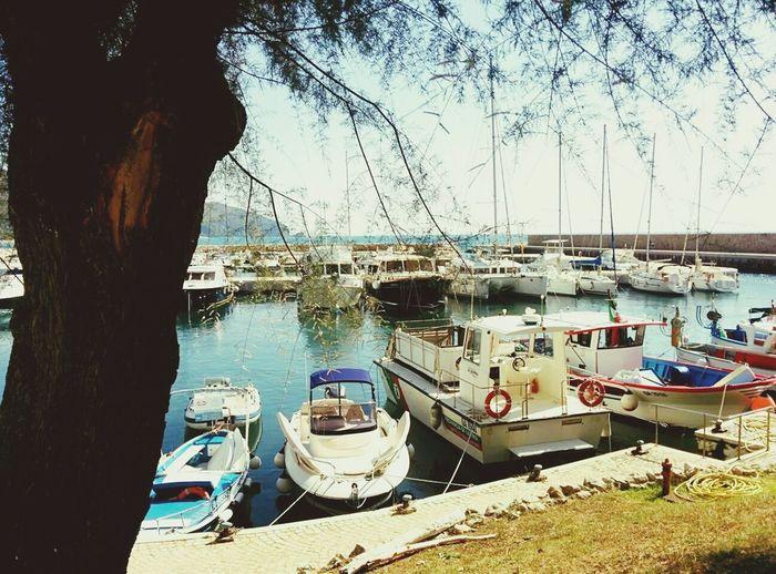 Trip Boats⛵️ Keep Calm And Snap On Seaside Landscape_photography Italy Sperlonga Sea Beach Trees