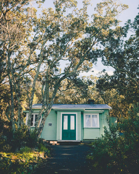 Architecture Beauty In Nature Branch Building Exterior Built Structure Cottage Cute Day Green Color Growth Nature New Zealand No People Outdoors Sky Tree