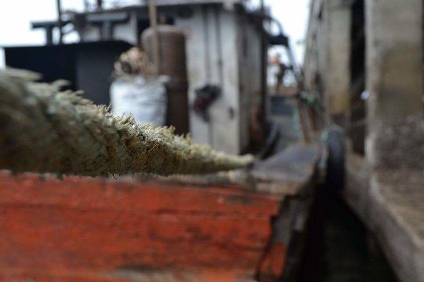 Ships Rope Coastal Life