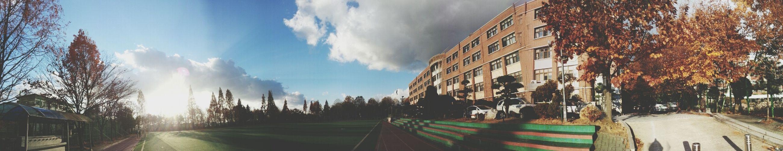 우리 학교. 유일한 자랑거리 잔디밭