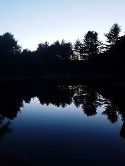 Reflection Lake Tree Water Silhouette Nature Sky No People Dawn Beauty In Nature Symmetry Outdoors Scenics Clear Sky Astronomy Day