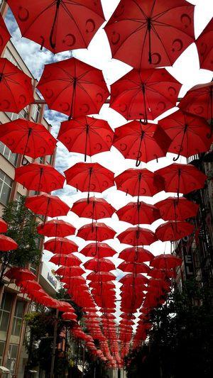 Malatya, Turkey Malatya Turkiyekareleri Sokak Sanatı SokaktaSanat Sokakfotografi şemsiye Sokak şemsiyeler Taking Photos Hello World şehirmanzarası Hi! Beautiful Organized