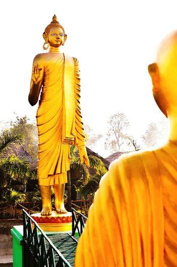 Buddha Statue Golden Buddha Sambodhi Resort