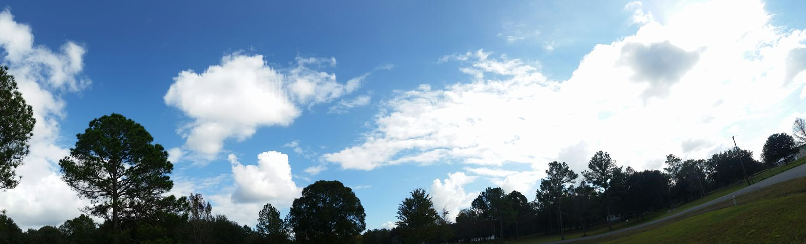 Florida Sky Clouds Outdoor Photography Hobbyphotography Taking Photos November 2015 Samsung Galaxy S5 Phoneography Sky Panorama View Hello World Landscape Tree Silhouette Silhouette