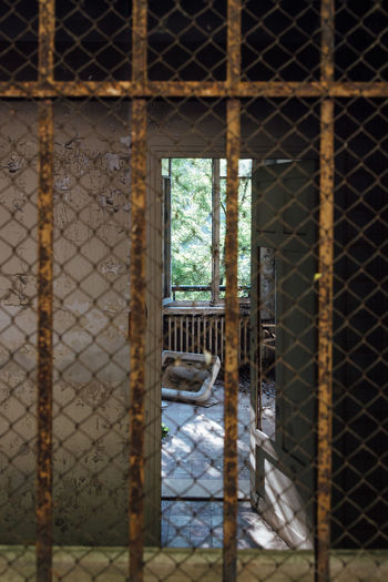 Abandoned Urbex Security Bars Door Corridor Window Mesh Fence Chainlink Fence Metal Protection Safety Day Cold Temperature Winter No People Outdoors Close-up Prison Gate Indoors  Metal Grate Architecture Security Bar