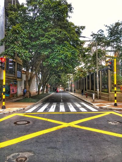 Tree Street Transportation Road Outdoors City Day Building Exterior Architecture No People