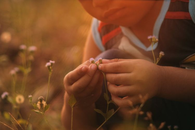Boy touching small flower on dawn time Flare Idea Sign Symbol Concepts Boys Kids Creative Perspective Conceptual Icon Advertisement Business Commercial Connection Nature Touching Symbol Wallpaper Website Boys Human Hand Tree Men Close-up Sky Personal Perspective Low Section Cropped Sunset Love The Game EyeEmNewHere Summer In The City My Best Travel Photo
