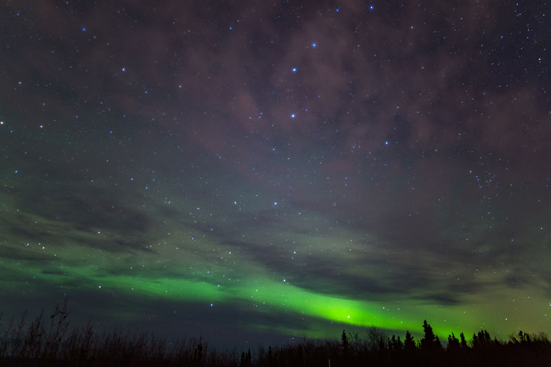 Northern Lights Astronomy Aurora Aurora Borealis Night Northern Lights Scenics Space Star Star - Space Star Field