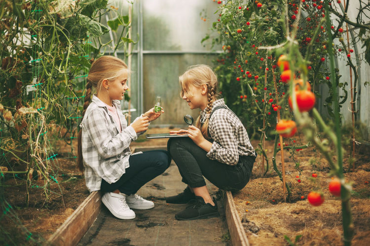 Two cute girls with a tablet in their hands examine a sample of a plant through a magnifying glass.