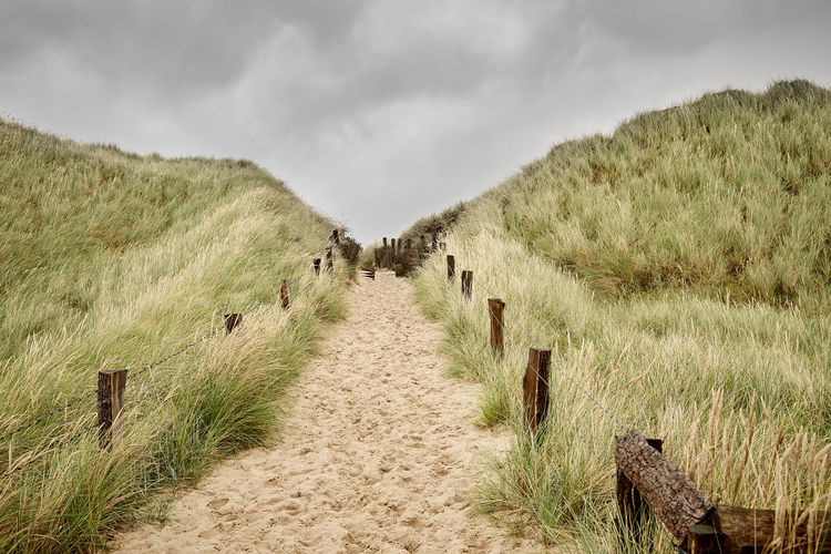 Cloud - Sky Grass Sky The Way Forward Direction Nature Land Environment Landscape No People Day Footpath Growth Scenics - Nature Rural Scene Beauty In Nature Tranquility Boundary Field Outdoors Timothy Grass Sylt, Germany Strand Dünen Dünengras
