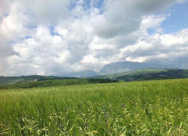 Landscape_photography Landscapes Spring Springfield Torricella Peligna Abruzzo - Italy