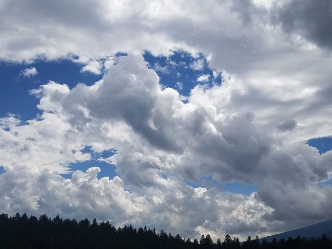 mountain air Cloud - Sky Outdoors Day Nature Forest Tree No People Beauty In Nature Sky Mountain