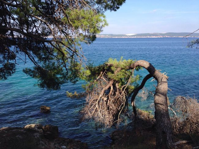 Finding New Frontiers Croatia Ugljan Croatia Sea Nature Water Beauty In Nature Horizon Over Water Tranquility Perspectives On Nature