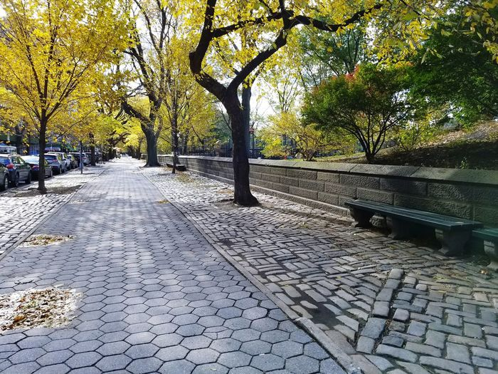 New York City Travel Destinations City Life Autumn Fall Upper East Side Manhattan Adventures In The City