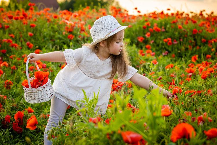 Cute girl picking flowers in park